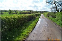 TL4102 : Cobbinsend Road near Waltham Abbey by Nigel Cox