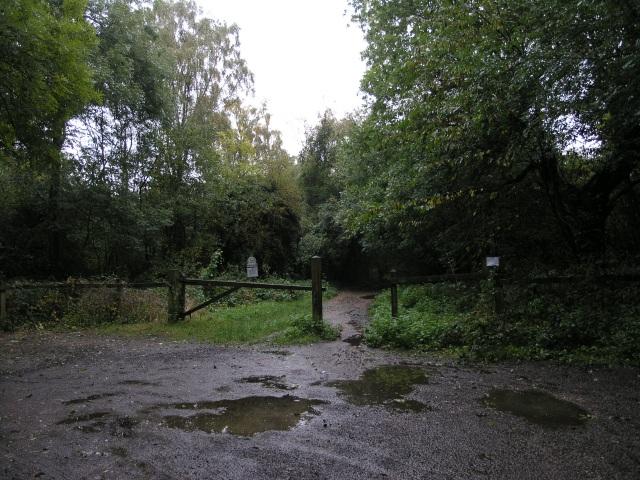 South Western corner of Headley Heath