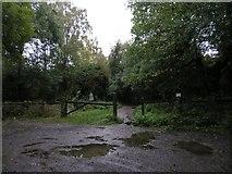 TQ1952 : South Western corner of Headley Heath by Hywel Williams