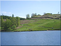 SD3299 : Tarn Hows by Charles Rawding