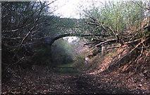 SX4970 : Railway bridge, above the river Walkham by Crispin Purdye