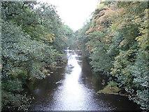 SK1984 : River Derwent by Chris Shaw