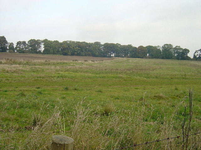 Site of the lost village of Cowlam