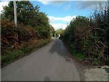 TQ4357 : Buckhurst Road TN16 by Philip Talmage