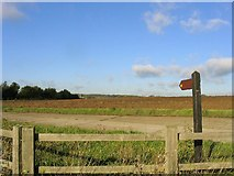 TL6902 : Bridleway near Galleywood, Essex by John Winfield