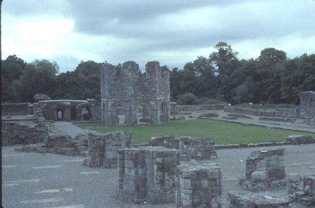 Mellifont Abbey.