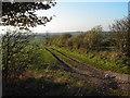 TA0508 : Fields opposite Whitehall Farm by Martyn Whiteley