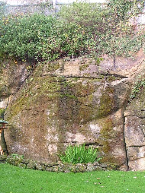 Tunbridge Wells sandstone Cliff by N Chadwick