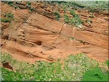 SX9777 : Cross-bedded Permian Sandstone by Tony Atkin