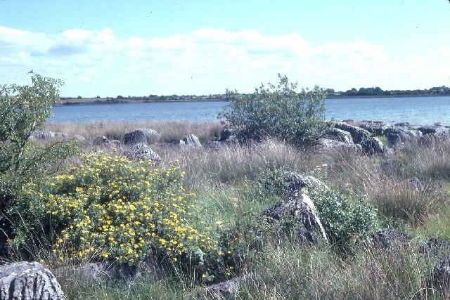 Shore of Lough Corrib, at Castletown, County Mayo.