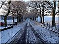 SD6221 : Dick Lane, Brinscall by Jon Royle