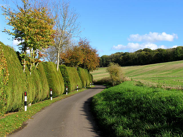 Country Road near Snelsmore Common