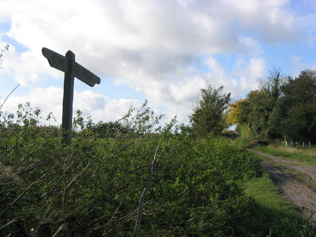 Footpath at Whitedown Farm