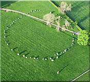 NY5737 : Long Meg and her Daughters, Eden Valley, Cumbria by Simon Ledingham
