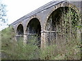 SK1172 : Monsal Trail Viaduct by Bob Danylec
