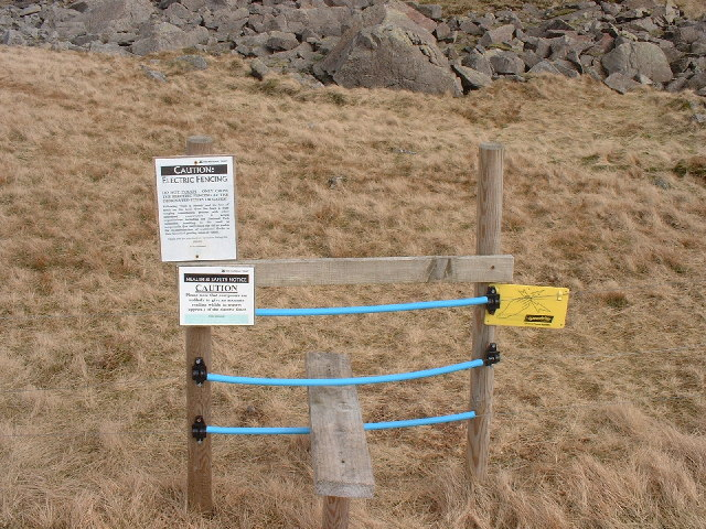 Electric Stile Cold Pike