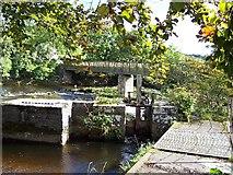 SE0063 : Tin Bridge over Linton Falls by Chris Heaton