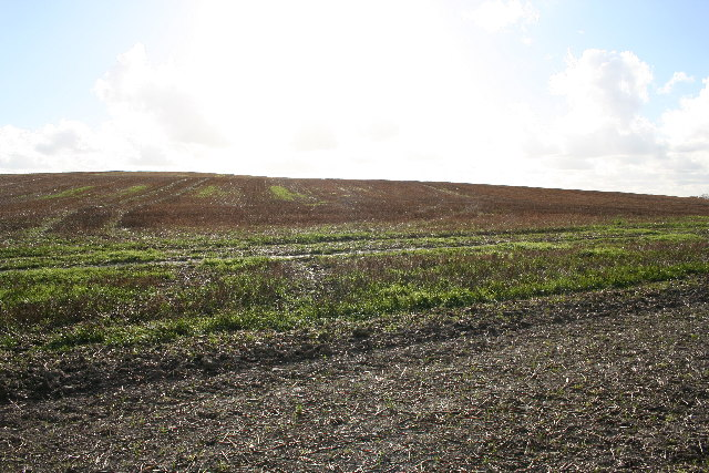 Rams Hill Fort