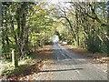 NS1070 : Road over Ardyne Burn bridge by william craig