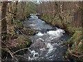 NS5476 : Allander Water, Mugdock Wood, Nr. Milngavie by Andrew McEwan