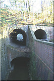 SD6205 : Tunnels beneath the Wigan-Manchester railway, leading to Borsdane Wood by David Long