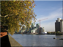 TQ2977 : River Thames from Pimlico Gardens, London  SW1 by Peter Jordan