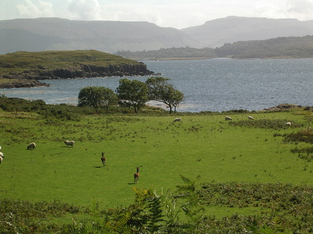 Ballygown Bay