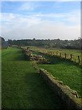 NZ1366 : Hadrian's Wall, Heddon-on-the Wall by Alan Fearon