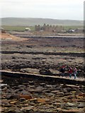 HY2428 : Looking towards Birsay from the Brough by Kirsty Smith