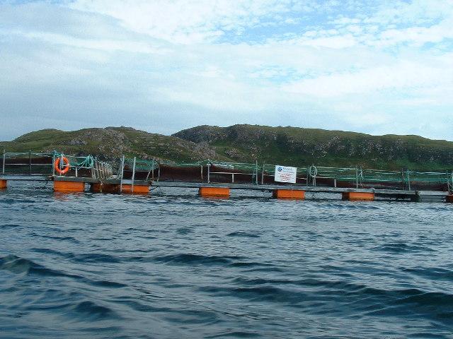 Summer Isles Fish Farm
