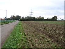 TF2434 : Rushy Drove, Quadring Eaudike, Lincs by Rodney Burton