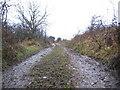 NY1737 : Farm track at Bothel. by John Holmes