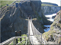 D0644 : Carrick-a-Rede Bridge by Ron Goodhew