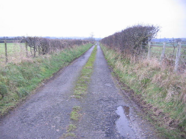 Track with hedges