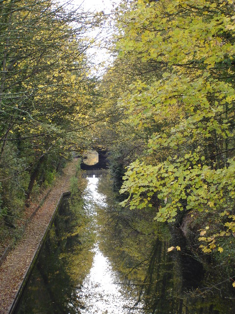 Grand Union Canal as it passes under Dove House Lane Solihull