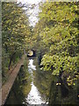 SP1481 : Grand Union Canal as it passes under Dove House Lane Solihull by peter lloyd