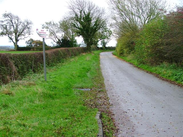 Looking Down New Lane