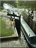 SE1039 : Looking back down Bingley Five Rise Locks by Nigel Homer