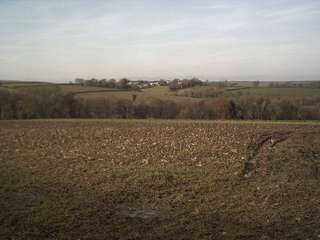 Farmland near Ford Lane