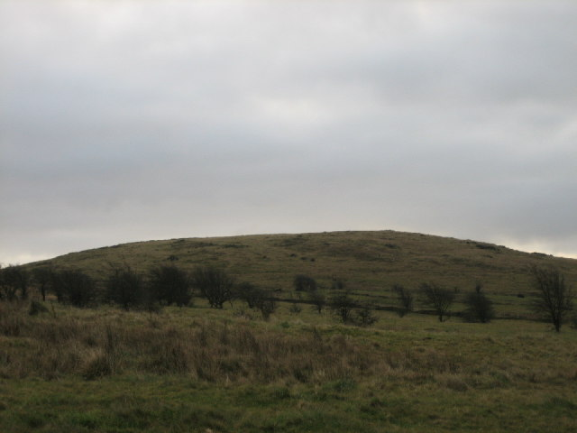Collin Mountain