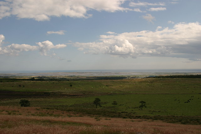 Holy Island from near St Cuthbert's Cave