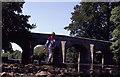 SE1986 : Kilgram Bridge by Chris Heaton