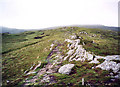 NN5047 : rough moorland above Loch an Daimh by bill copland
