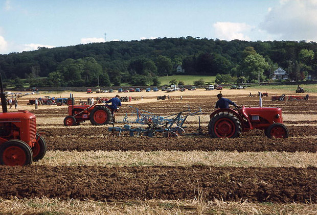 Brockley: ploughing match