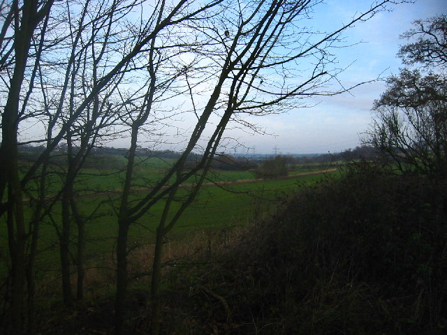 Looking north-east from Lolleywood Lane