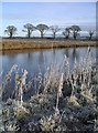 NY1082 : The River Annan at Halleaths, Christmas Day 2005 by Lynne Kirton
