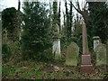 TQ3386 : Abney Park Cemetery by John Davies
