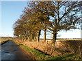 NO4004 : By Hatton Farm by Jim Bain