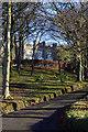 SC3180 : Greeba Castle by Andy Stephenson