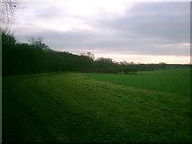 TL2012 : Open land near Long Grove Plantation by Richard Mills
